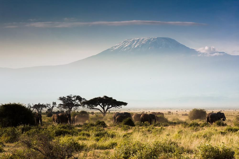 Kilimanjaro - Foto: Shutterstock