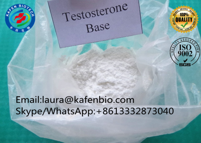 Muscle Body Building Anabolic Steroids Powder Testosterone Base