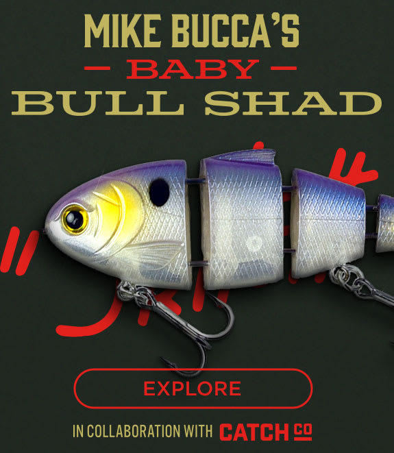 Mike Bucca's Baby Bull Shad