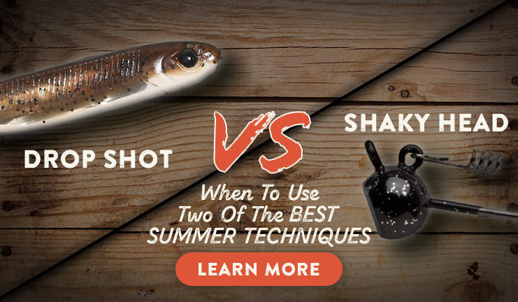 Shaky Head vs Drop Shot
