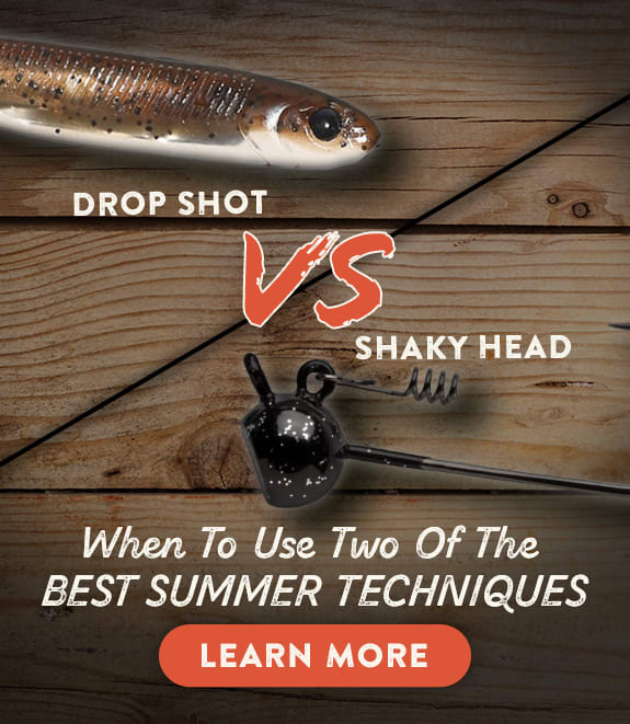 Shaky Heads vs Drop Shot