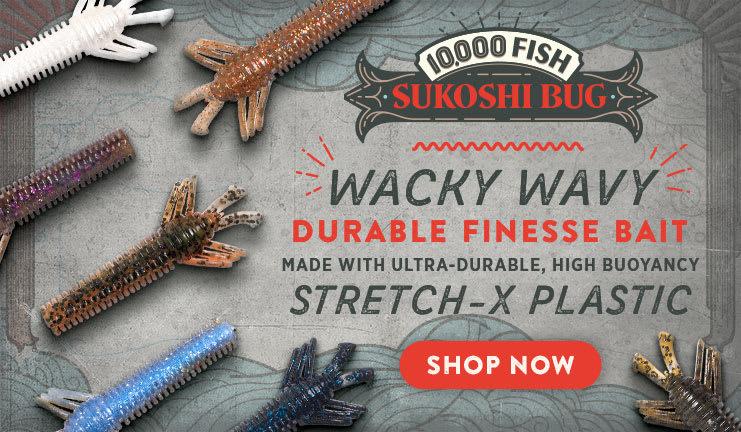 10,000 Fish Sukoshi Bug