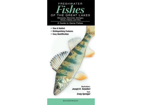 Freshwater Fishes of Great Lakes Guide