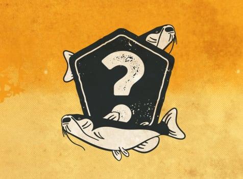 December Mystery Catfish Bundle