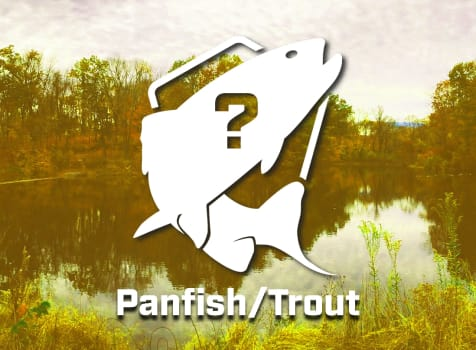 Mystery Panfish/Trout Bundle