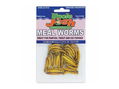 Uncle Josh Meal Worms - 24pack