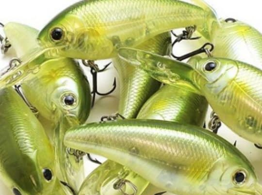3 Must-Know Tips For Fishing Medium Depth Crankbaits