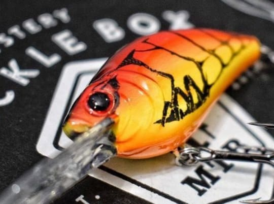 Bass Hack: Why Red Lures CRUSH In The Spring