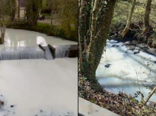 Got Milk? Over 7 Thousand Gallons Of Milk Spill Into A Welsh River
