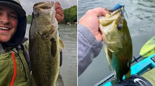 How To Catch More Bass From A Kayak This Summer