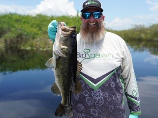 Bass Fishing In The Grass: 3 Baits That Will Crush All Summer Long