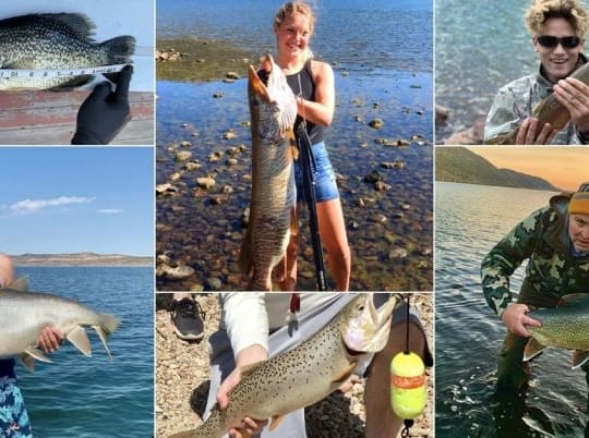 10 Record-Setting Fish Caught In Utah This Season