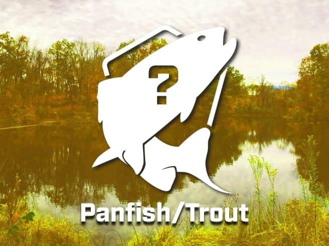 Mystery Panfish/Trout Bundle