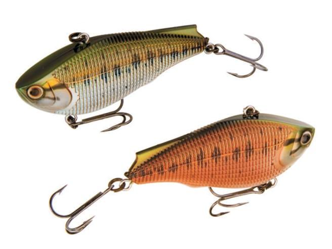 Chameleon Baby Bass