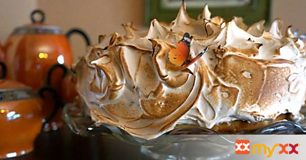 Roasted Marshmallow Meringue Frosting and How I Acquired a Plumber's Torch