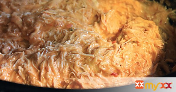 Crockpot Chicken Salsa Dip