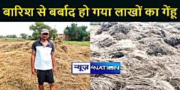 BIHAR NEWS : बारिश से बर्बाद हो गया लाखों रूपये का गेंहू, किसानों के चेहरे पर छाई मायूसी