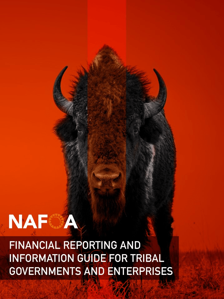 Financial Reporting and Information Guide for Tribal Governments and Enterprises