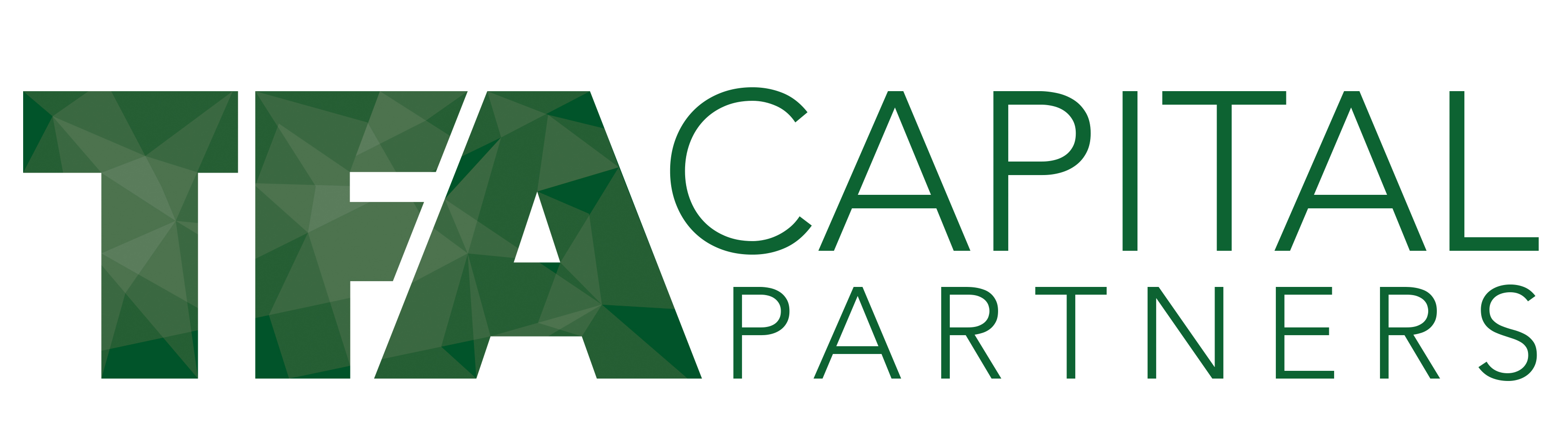 TFA Capital Partners