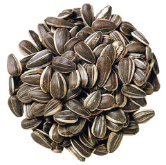 SUNFLOWER SEEDS ROASTED UNSALTED INSHELL