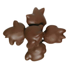 NASSAU CANDY MILK CHOCOLATE ALMOND TURTLES