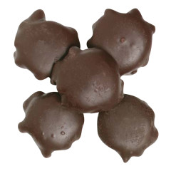 NASSAU CANDY DARK CHOCOLATE CASHEW TURTLES