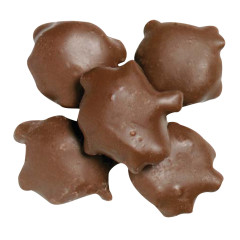 NASSAU CANDY MILK CHOCOLATE PECAN TURTLES