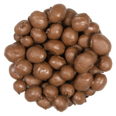 CHOCOLATE DOUBLE DIPPED PEANUTS