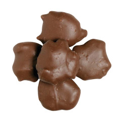 NASSAU CANDY MILK CHOCOLATE PECAN CLUSTERS