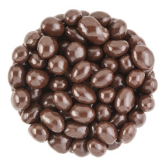 NASSAU CANDY BELGIAN DARK CHOCOLATE PEANUTS