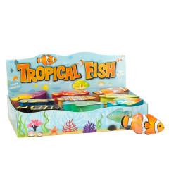 AMUSEMINTS TROPICAL FISH SUGAR FREE SOUR FRUIT CANDIES 0.39 OZ TIN