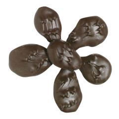NASSAU CANDY DARK CHOCOLATE COVERED GINGER
