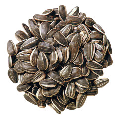 SUNFLOWER SEEDS IN SHELL ROASTED UNSALTED