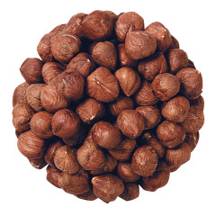 UNBLANCHED LARGE OREGON HAZELNUTS (FILBERTS)
