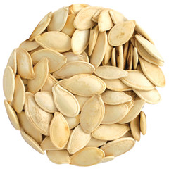 ROASTED SALTED INSHELL PUMPKIN SEEDS