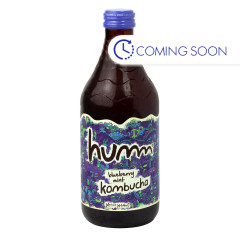 HUMM BLUEBERRY MINT KOMBUCHA 14 OZ BOTTLE