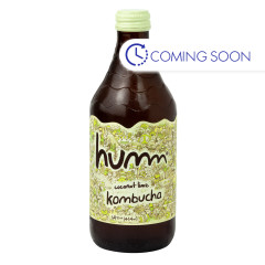 HUMM COCONUT LIME KOMBUCHA 14 OZ BOTTLE