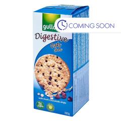 GULLON DIGESTIVE OATS & CHOCOLATE 15 OZ BOX