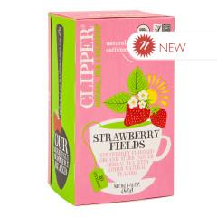 CLIPPER STRAWBERRY FIELDS TEA 20 CT BOX