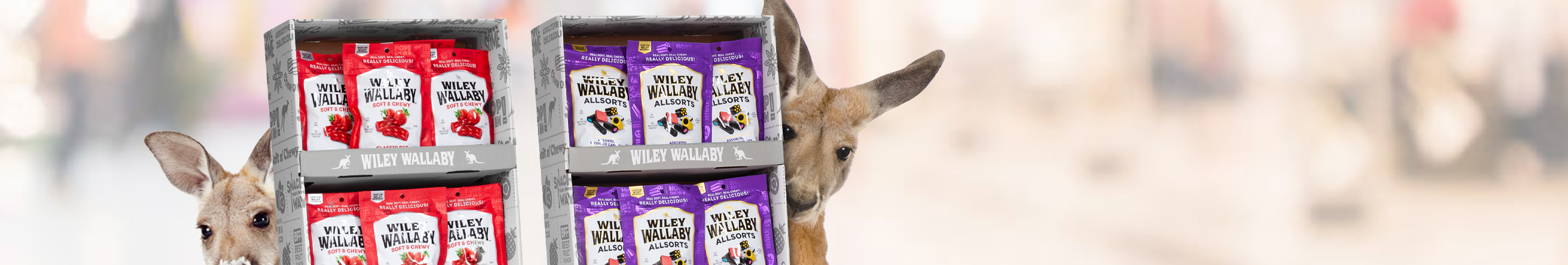 Wallaby_Banner