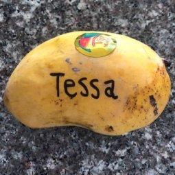 Tessa thornton