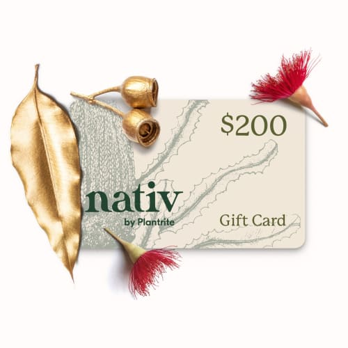 $200 e-gift card