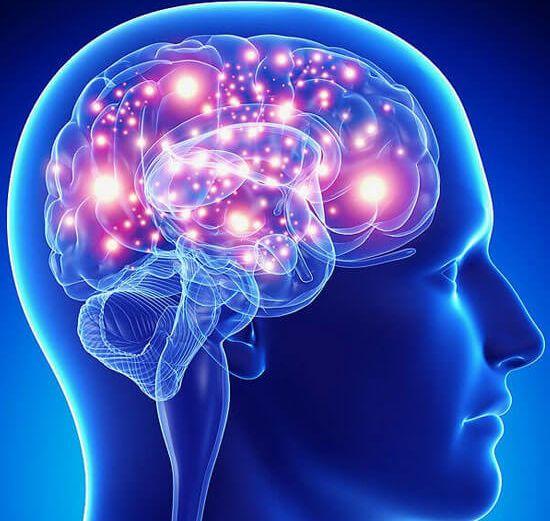 Memory & Mental Clarity