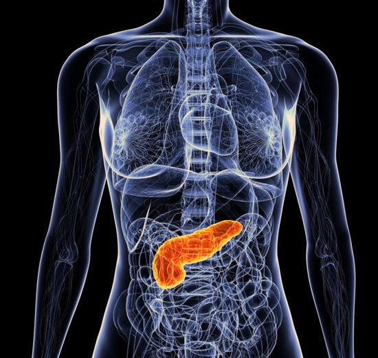 Pancreas Health