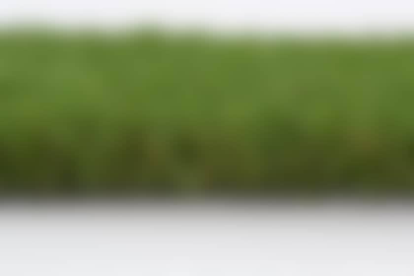 Modèle de gazon bali