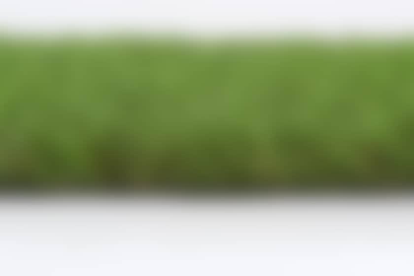 Gazon synthetique entrée de gamme java