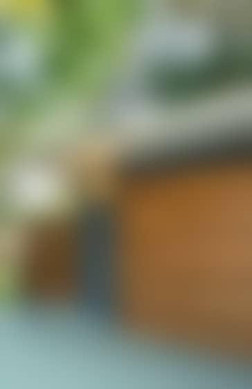 facade de maison en bardage bois douglas