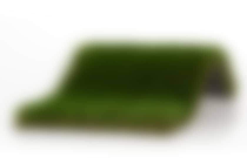 Modèle de gazon borneo