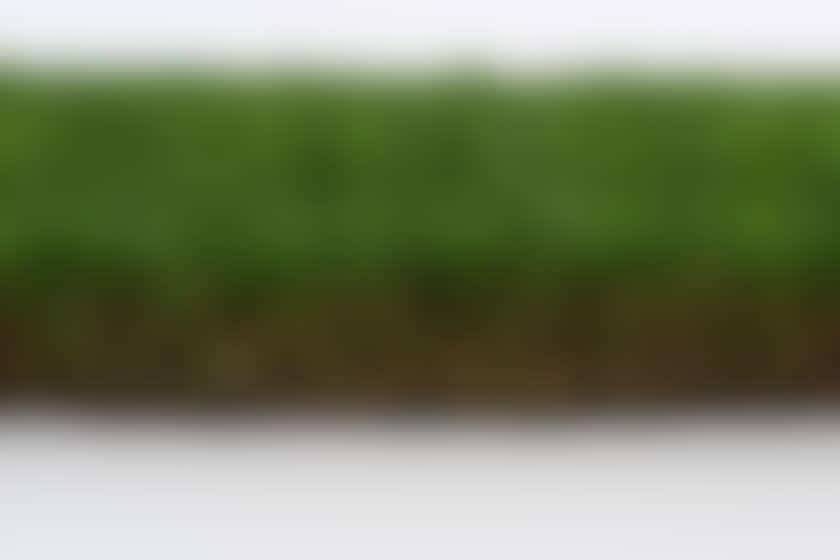 Gazon synthetique entrée de gamme sumatra