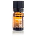 Frankincense, Organic Essential Oil (5 ml)
